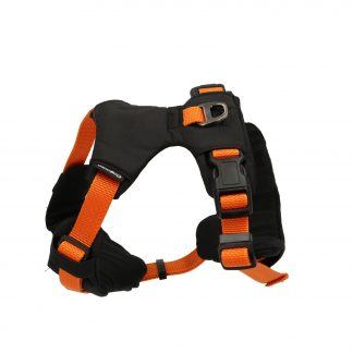 Emmi-sportsele-orange