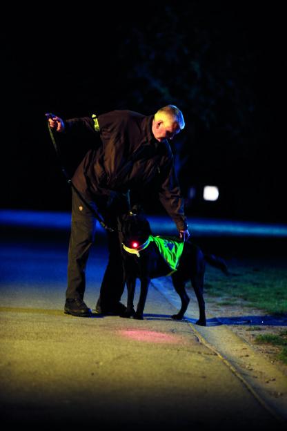 Orbiloc dog dual LED säkerhetslampa
